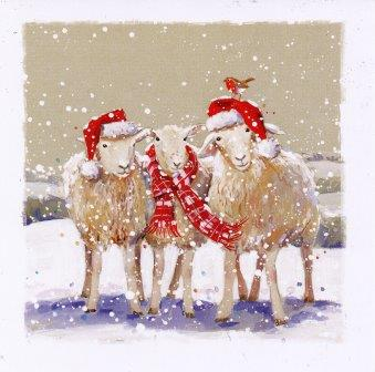 Christmas Cards Winter Woollies