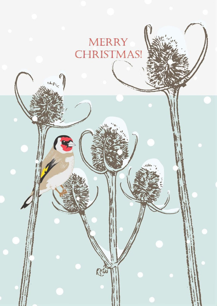 Umbellifer Single Christmas Card - Goldfinch and Teasels