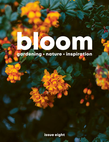 Bloom Magazine Issue 8