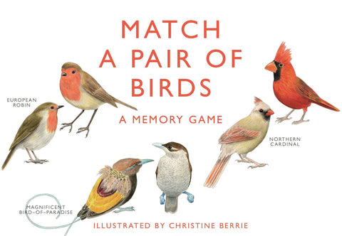 Match a Pair of Birds Game Memory Game