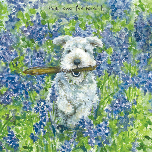 Little dog laughed Greeting Card - Bluebells