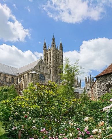 Canterbury Cathedral Gardens
