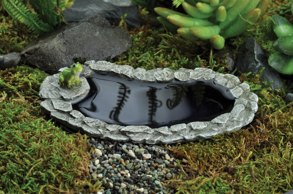 Fiddlehead Miniature Frog Pond