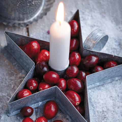 'Cranberry Candle Holder' Christmas Card