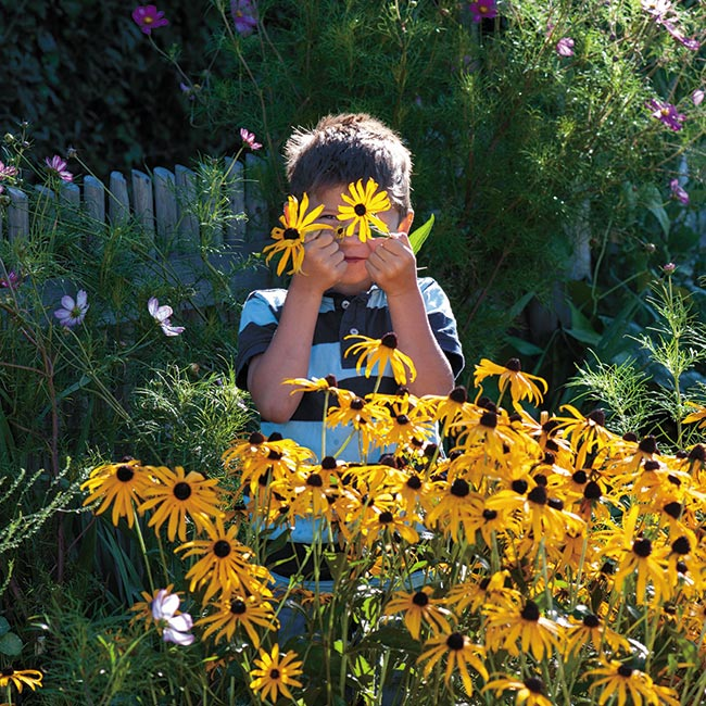 Floreo Card - Boy Picking Helenium