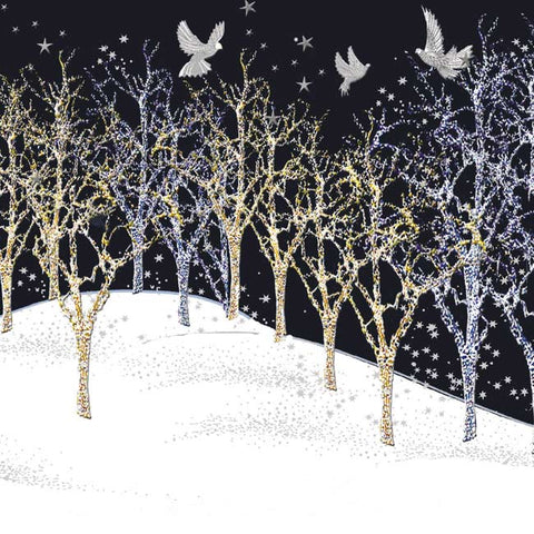 'Night Flight' Christmas Cards