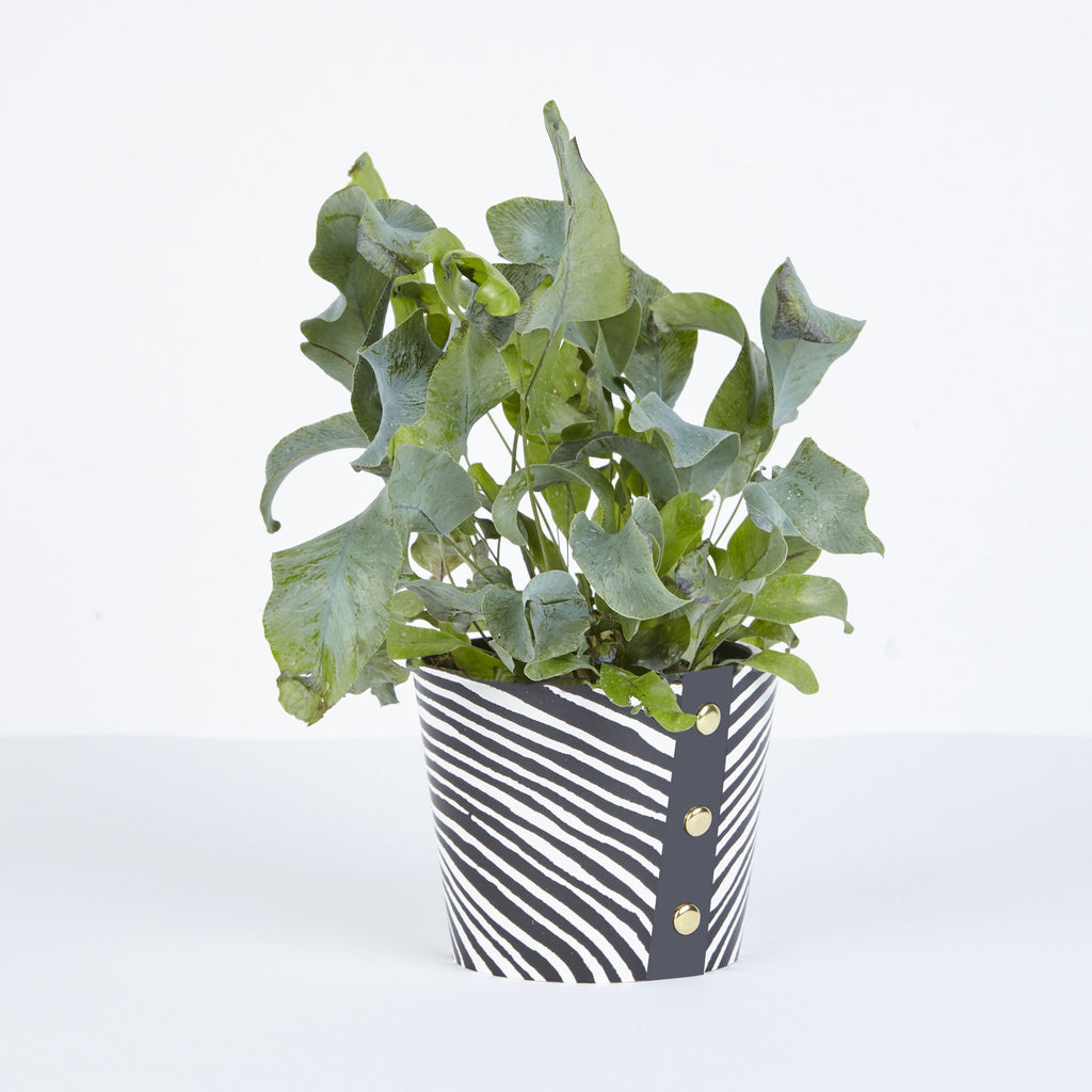 Studio Wald - Plant Pot Cover Wood Medium