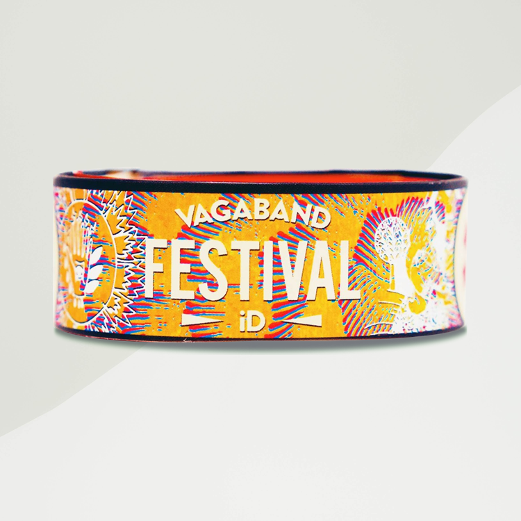 The Festival Band - Vagaband LTD