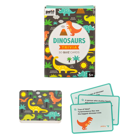 Dinosaur Trivia Card Game