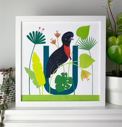 U for Umbrellabird Alphabet Print