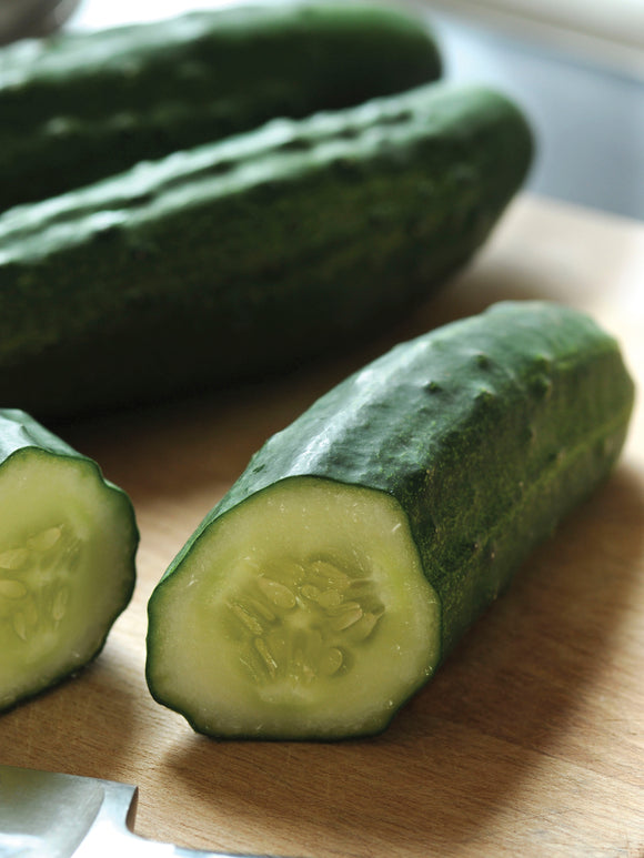 CUCUMBER PATIO SNACKER