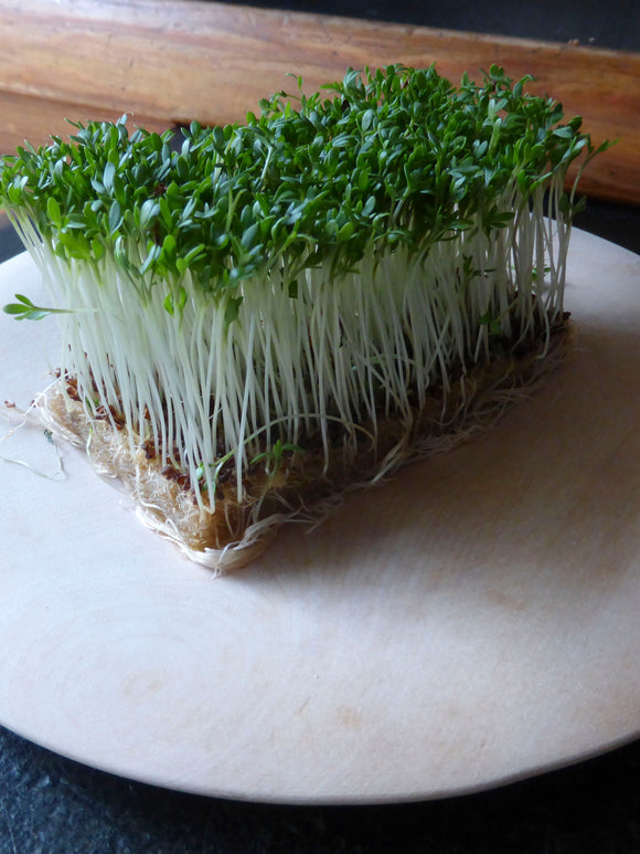CRESS GARDEN COMMON