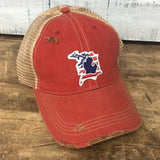 Michigan D Flag Distressed Hat