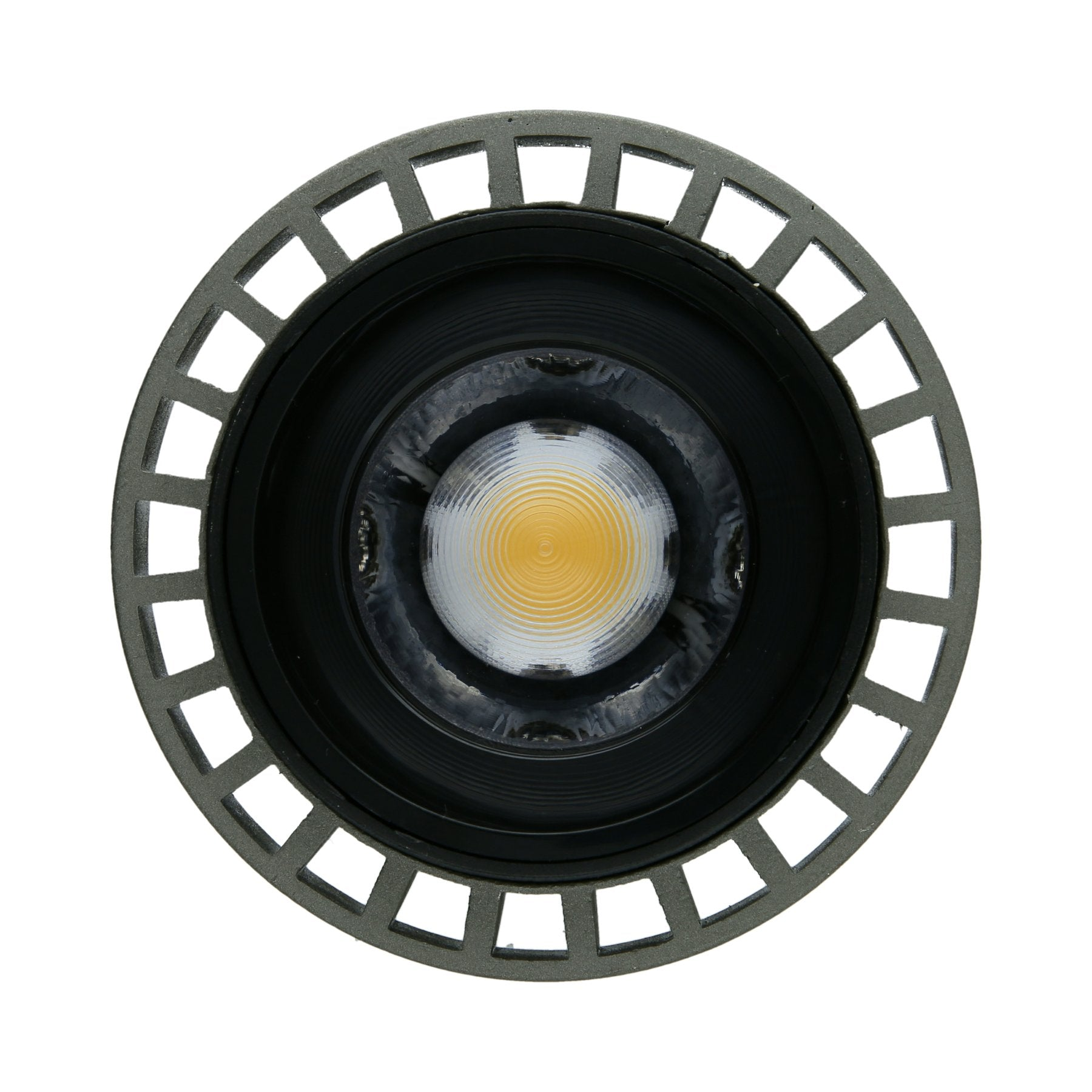 Ultra High CRI Flood Light (PAR30)