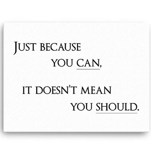 Just Because You Can, It Dosen't Mean You Should Canvas Wall Art
