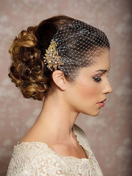 Birdcage Veil with Russian Netting and Gold Rhinestone Jewel - RDevine Fashion (Wedding & Bridal)