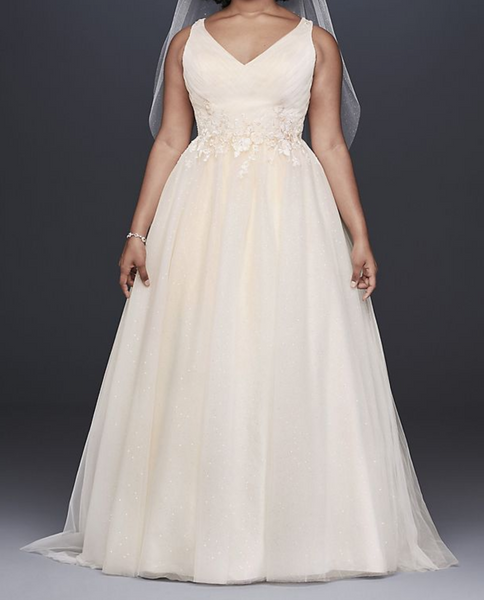 Sleeveless A Line Wedding Gown with Beaded Floral Appliques & Sparkle Tulle