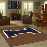 Illinois University Team Spirit Rug