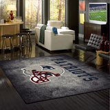 NFL New England Patriots Distressed Rug