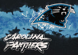 Carolina Panthers NFL Team Fade Rug