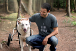 'I Like Dogs' T-shirt from Rodney Habib