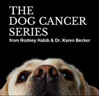 Dog Cancer Series Silver to Gold Upgrade