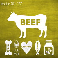 PP20 Raw Beef Recipe for Adult Cats