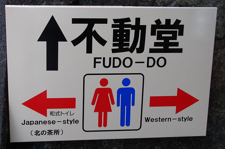 The Japanese Toilet Seat Guide: A British Perspective – Washloo