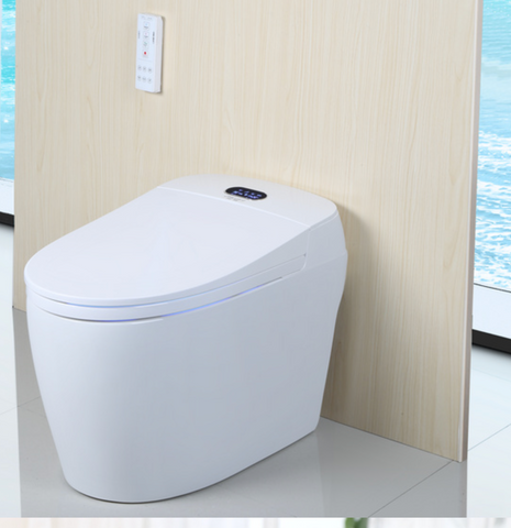 Washloo Premier All-In-One Smart Toilet