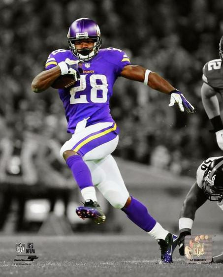 Adrian Peterson Minnesota Vikings 16x20 Photograph