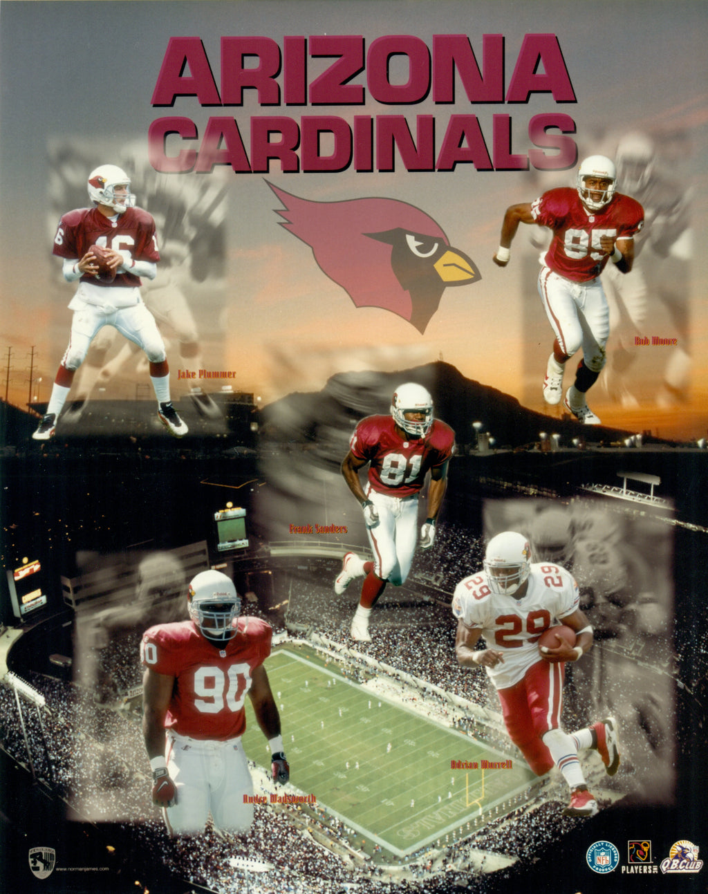 Arizona Cardinals 8x10 Photograph