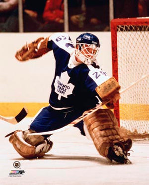 Mike Palmateer Toronto Maple Leafs 8x10 Photograph