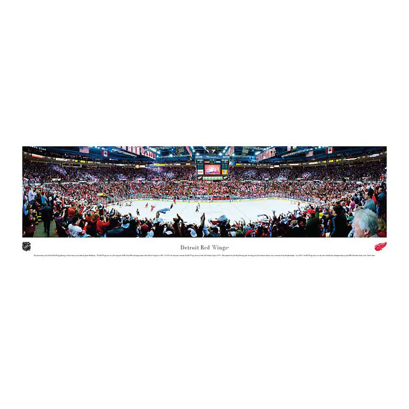 Detroit Red Wings Joe Louis Arena Panoramic Print