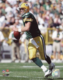 Brett Favre Green Bay Packers 8x10 Photograph