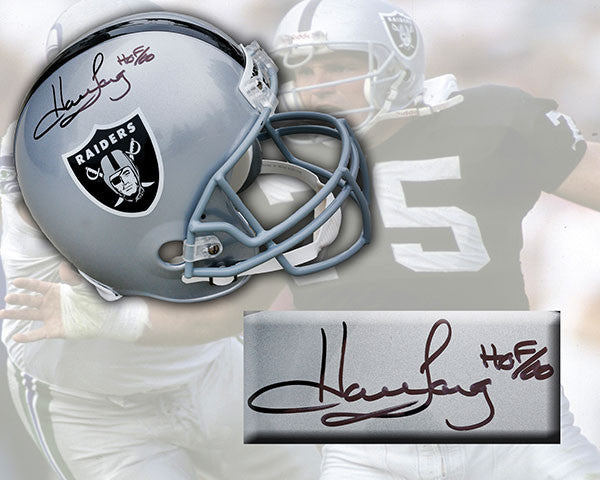 Howie Long Los Angeles Raiders Signed Deluxe Replica Football Helmet
