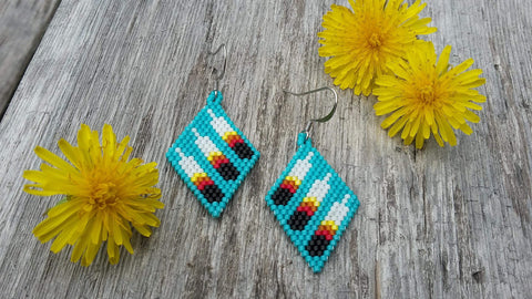 $40 earrings