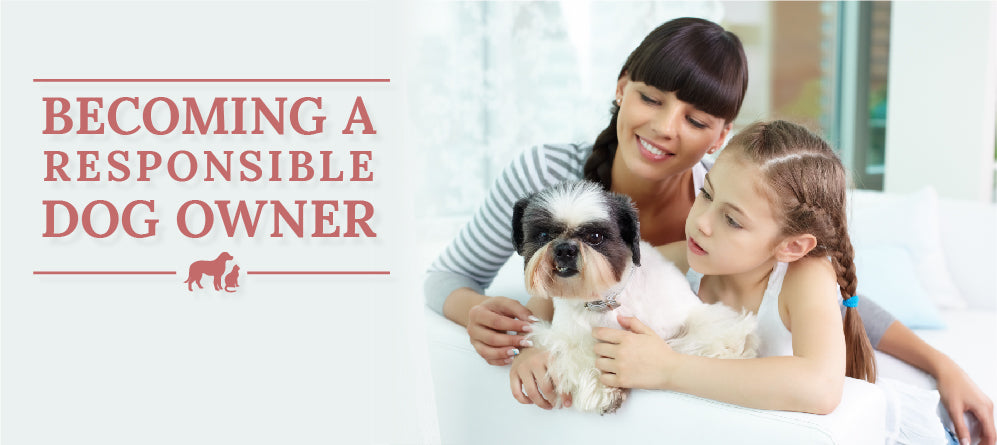 Becoming a Responsible Dog Owner