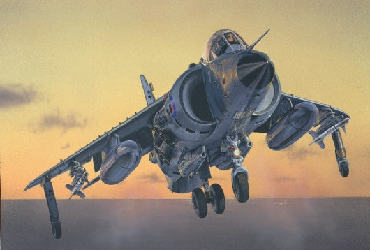 Italeri Aircraft 1/72 Sea Harrier FRS1 Fighter/Bomber Kit