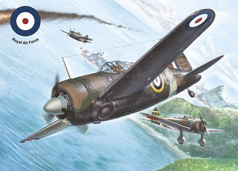 Special Hobby Aircraft 1/32 Model 339E Buffalo Mk I Aircraft Kit