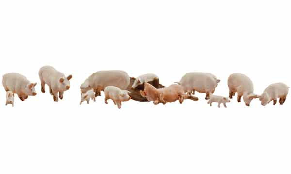Woodland Scenics HO  Scenic Accents Yorkshire Pigs & Piglets (12)