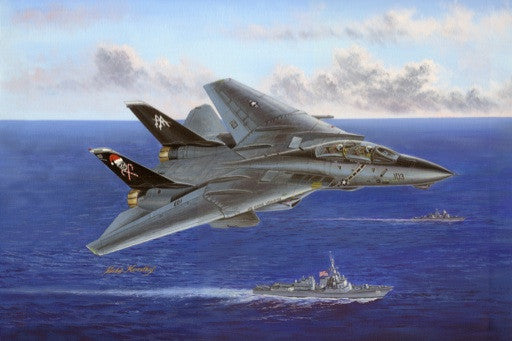 Hobby Boss Aircraft 1/48 F-14B Tomcat Kit