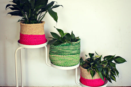 Planter Basket (2 color mix)