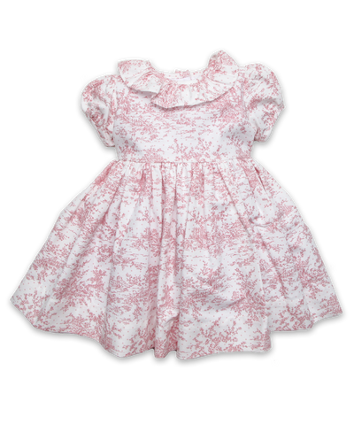 Dress with Ruffle Collar in Pink Toile