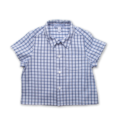 Shirt in Blue Windowpaine