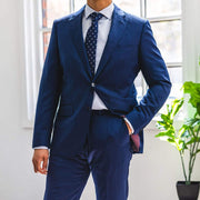 Anatoly & Sons Suits Blue Drago Suit