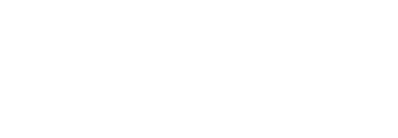 Deer Skin Gloves