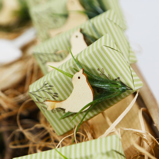 Baby Birdie Chocolate (Pack of 40)