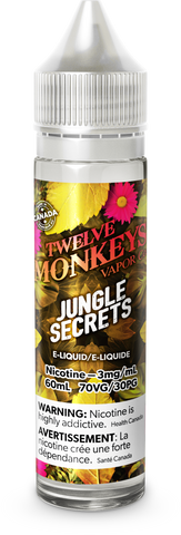 Jungle Secrets