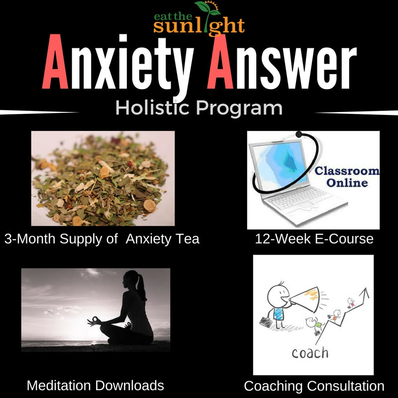 Anxiety & Stress Holistic Program