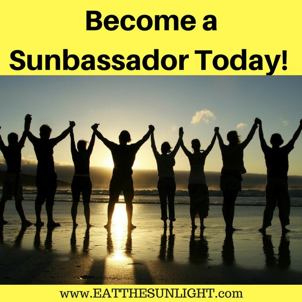 Sunbassador Program